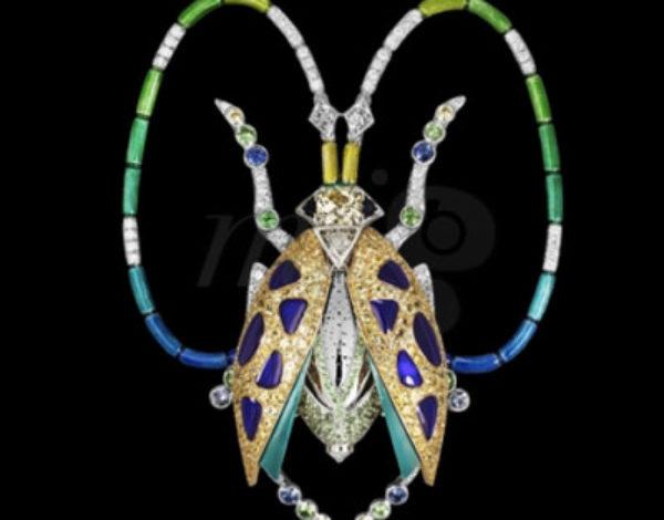 Los escarabajos olfativos de Lorenz Bäumer