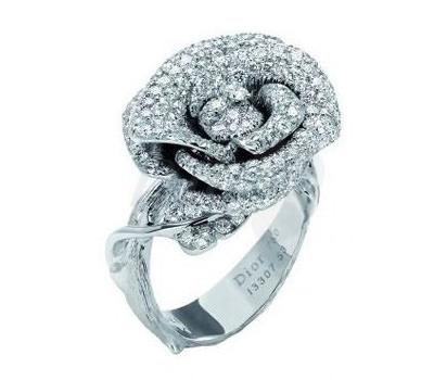 Rose Dior Bagatelle