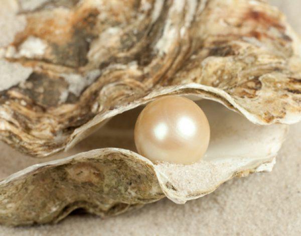 Conservar las perlas, nuestros mejores consejos