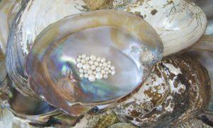 ¿Cómo limpiar un collar de perlas?