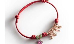 ¿Una pulsera Dodo en lugar de una felicitación Navideña?